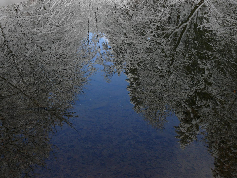 Winterteich
