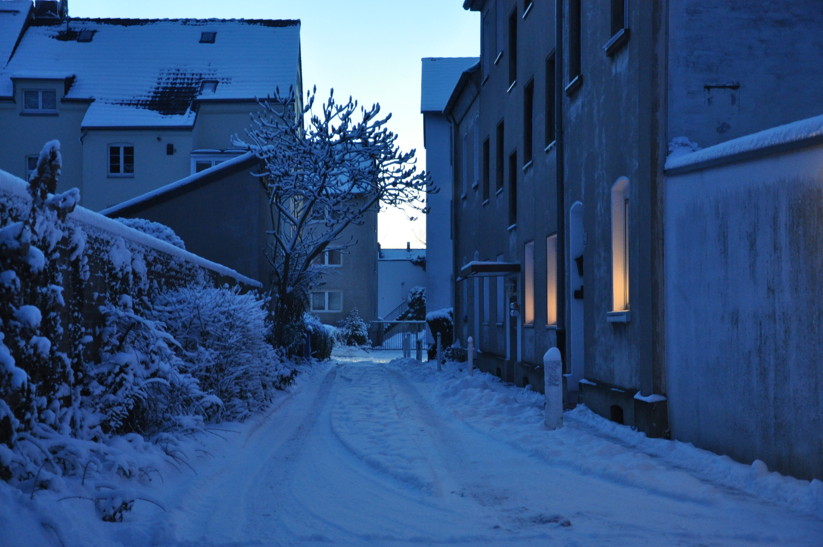 Wintertime 2012