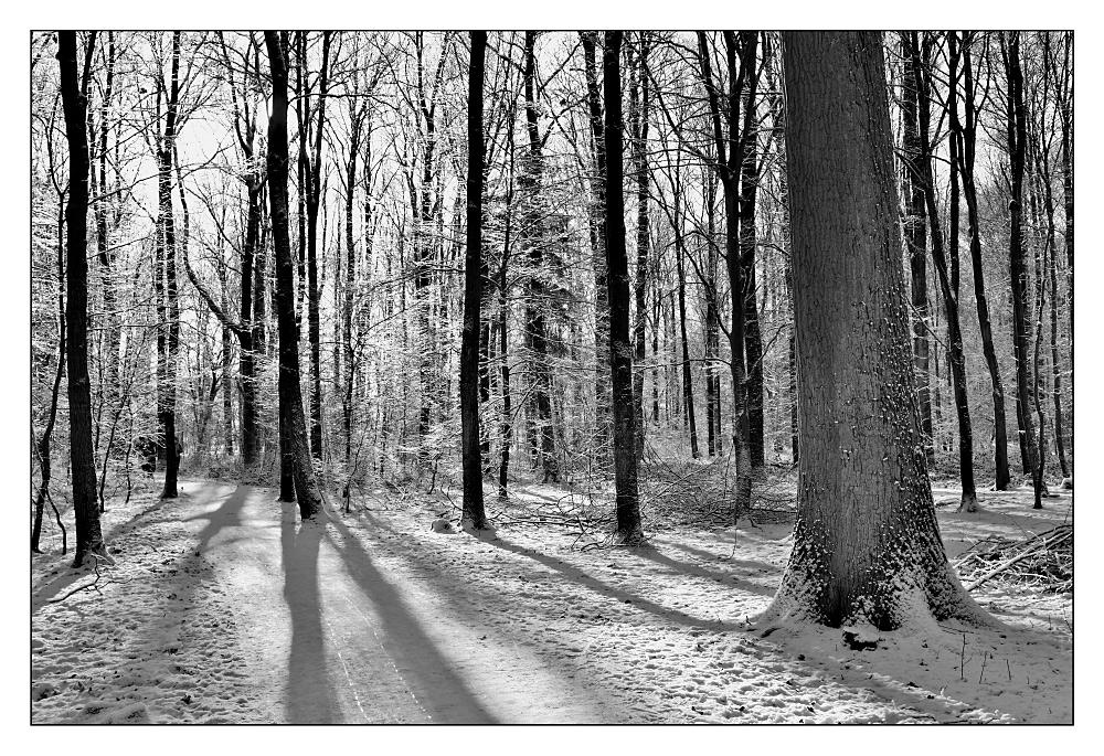 Wintertime