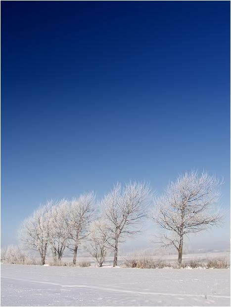 Wintertime......