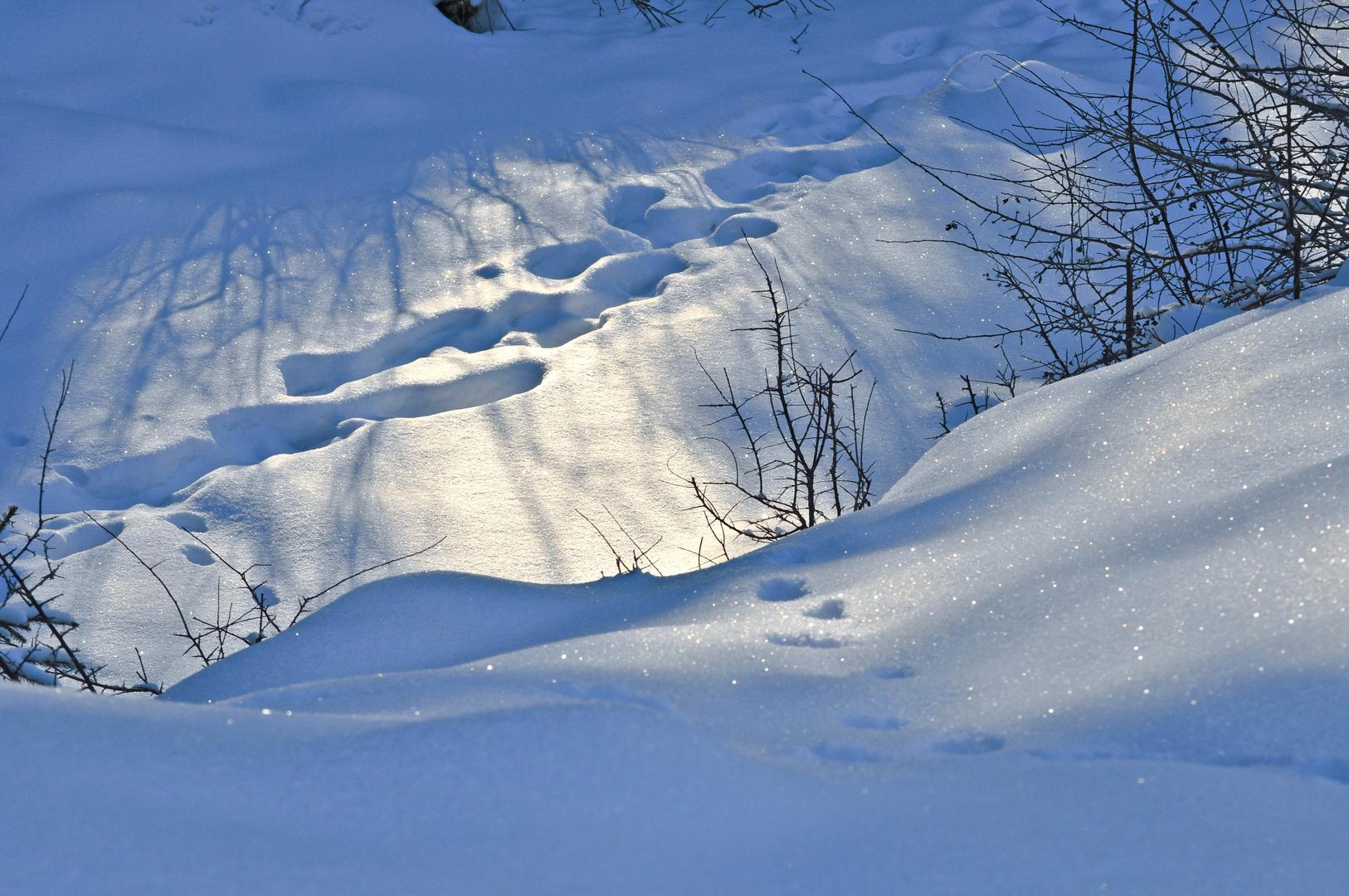 Wintertime03
