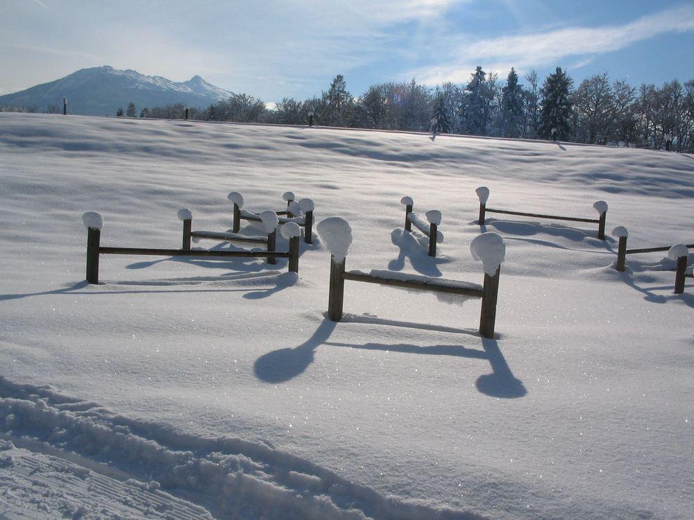 Wintertraum 1