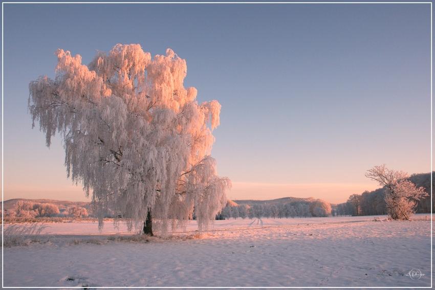 *** Wintertraum-2***