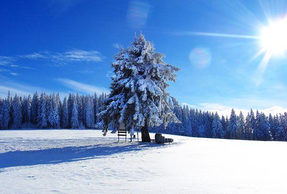 Wintertraum am Thurner