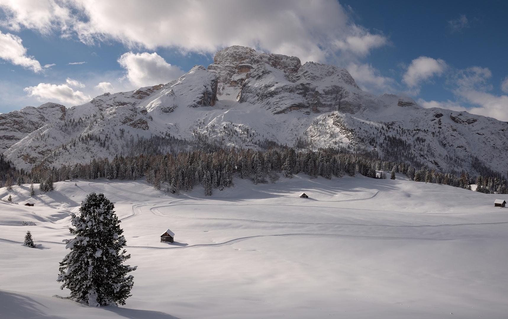 Wintertraum auf der Plätzwiese. Dieses Jahr sieht es da oben nicht so schön aus, zum Glück...