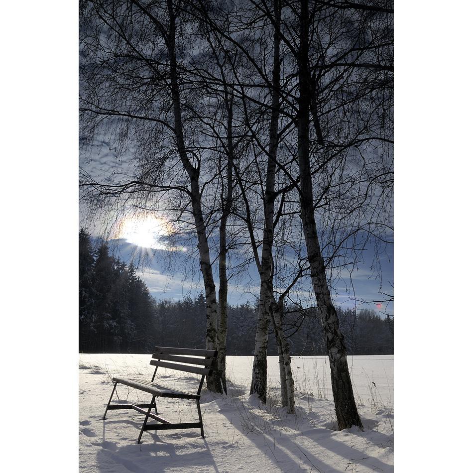 Wintertraum III