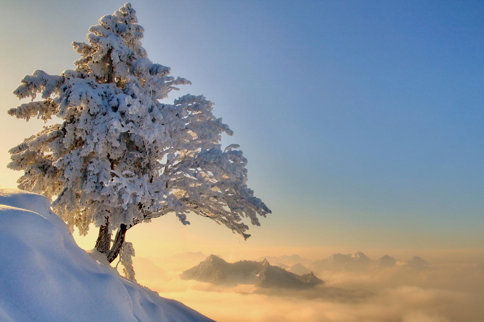 Wintertraum im Chiemgau