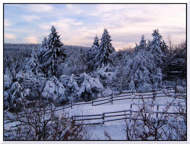 Wintertraum im Harz