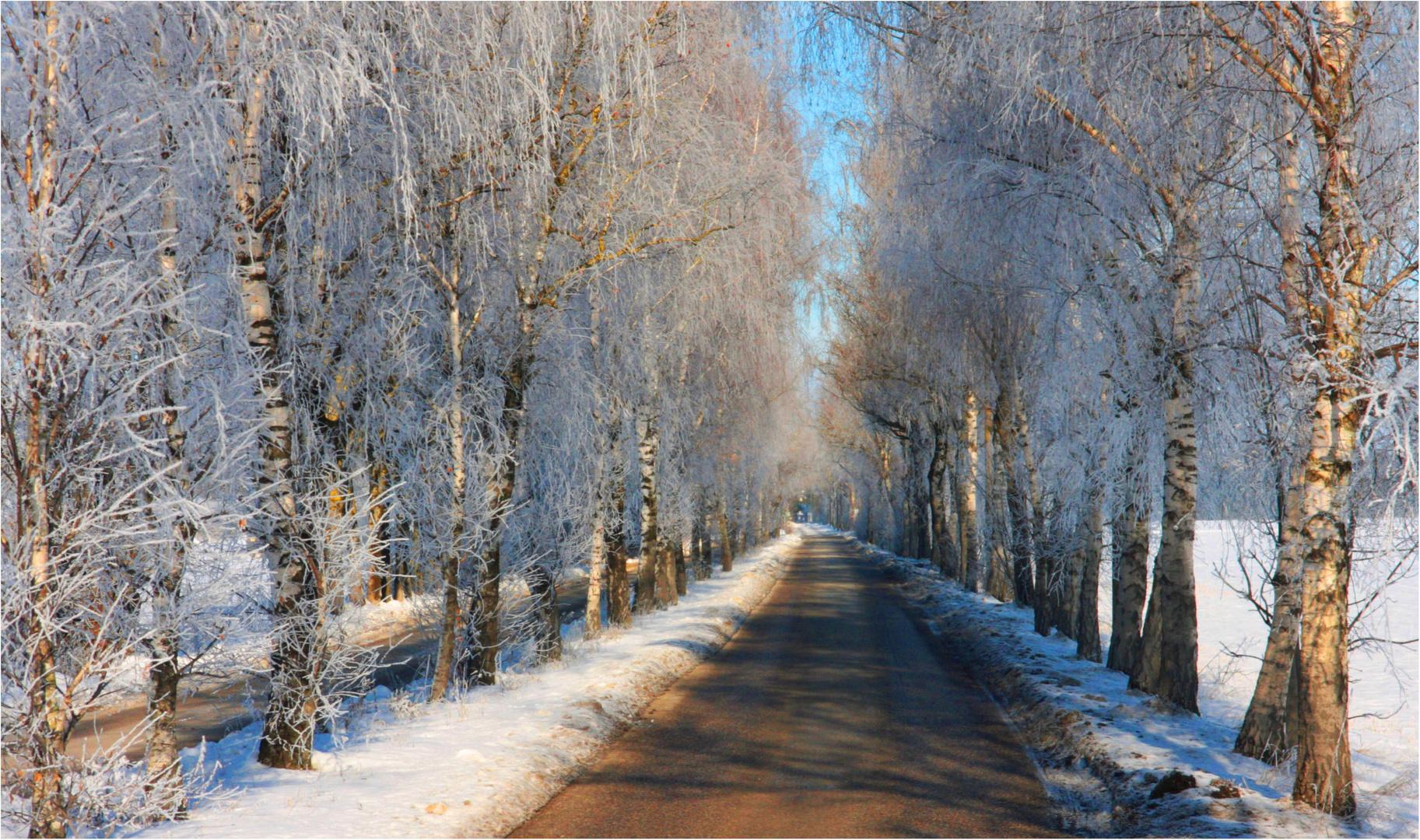 Wintertraum im März