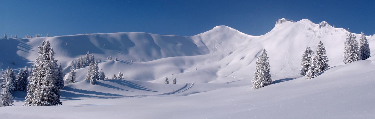 Wintertraum in der Hörnergruppe