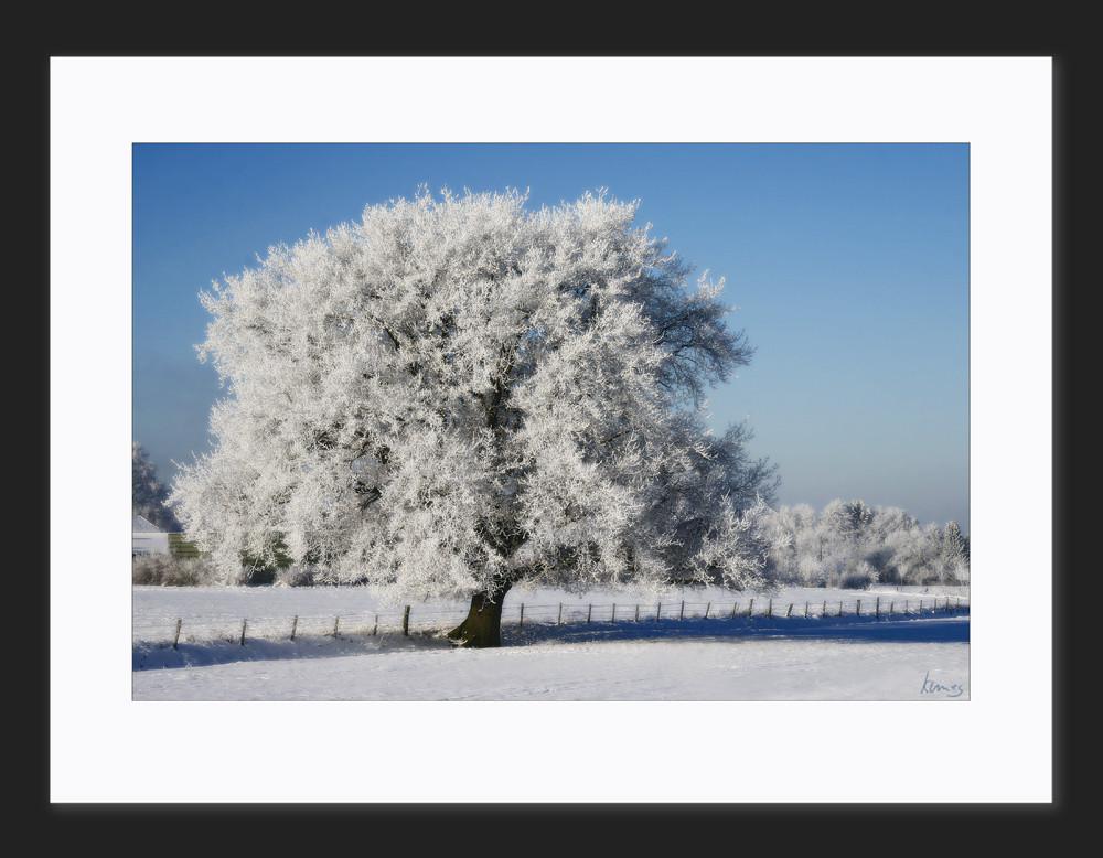 Wintertraum Niederrhein