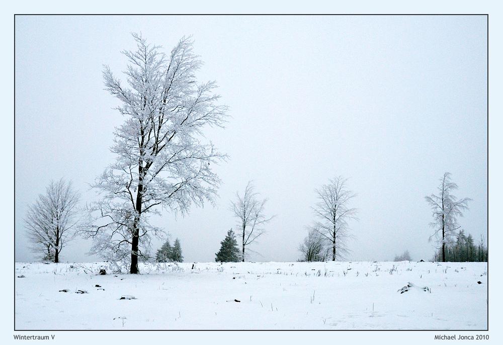 Wintertraum V