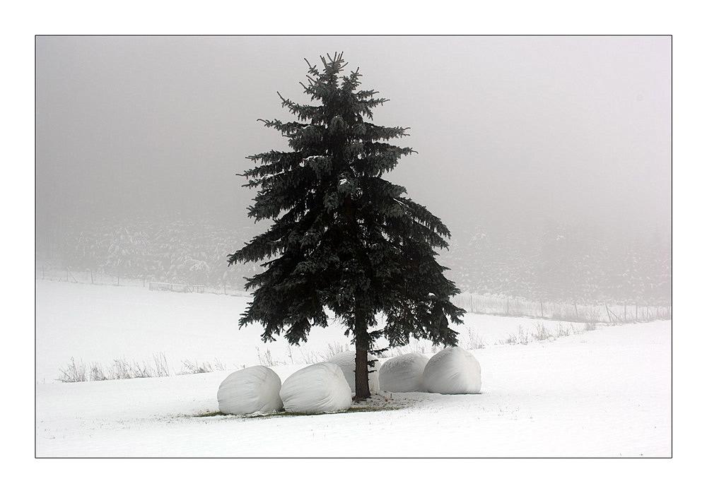 Wintervoräte