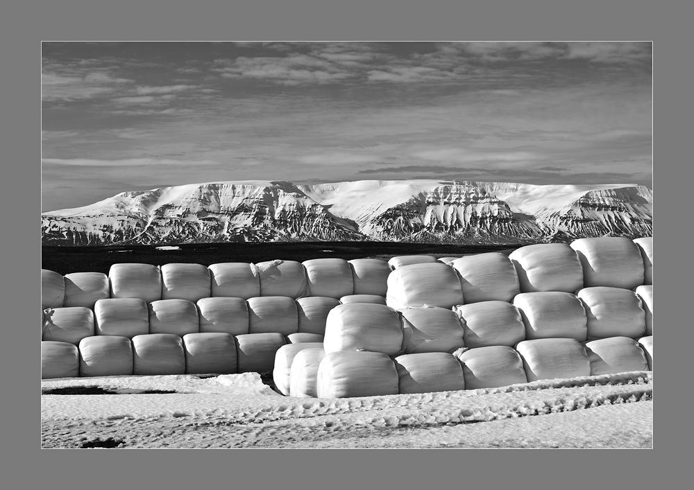 Wintervorrat - Island #1042
