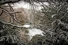 Winterwald von J. Simon