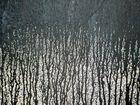 Winterwald (Ausschnitt aus Graffiti 1)