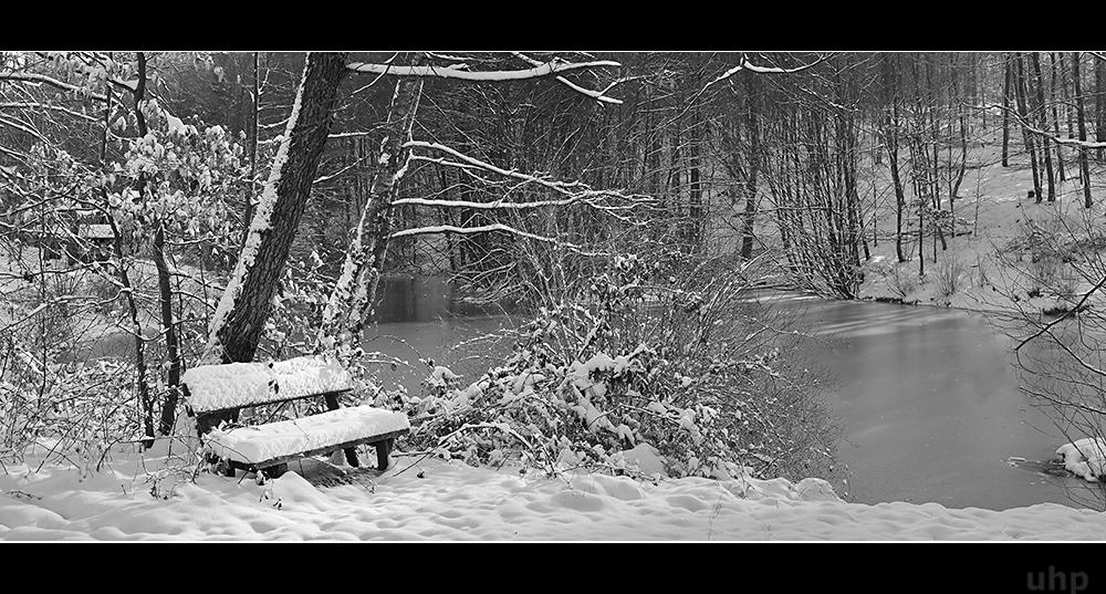 Winterwald-Weiher
