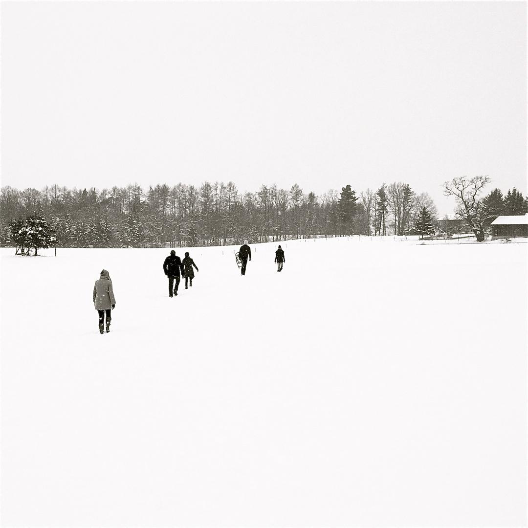 winter.walk
