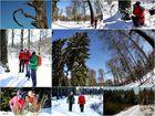 Winterwanderung 1