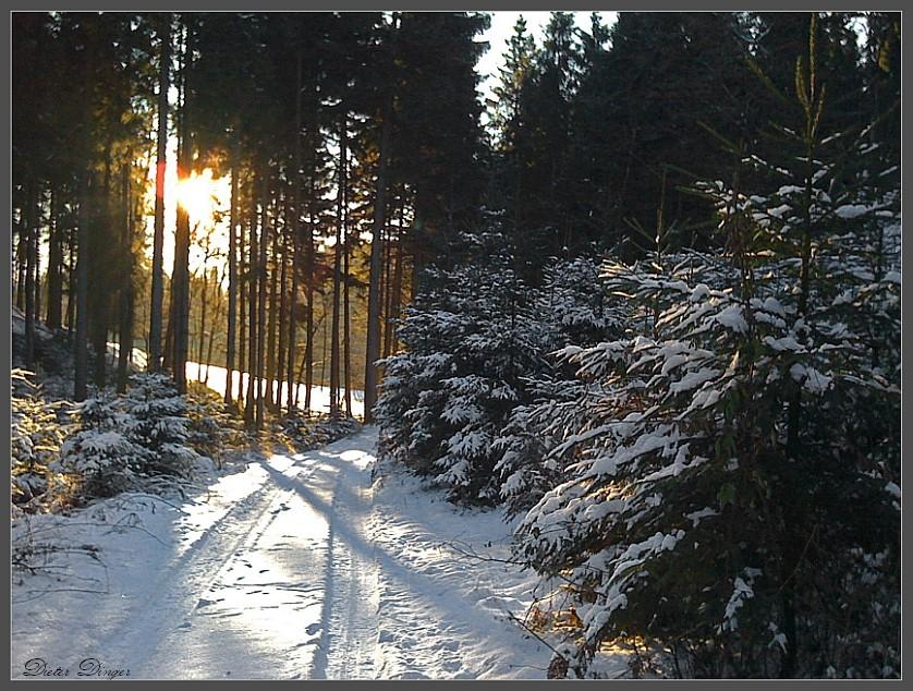 Winterwanderung 2