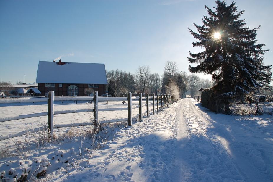 Winterwanderung 3