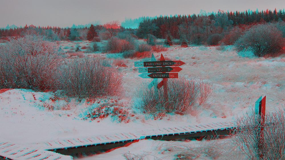 Winterwanderung (3D-Bild mt Rot/Cyan-Brille betrachten