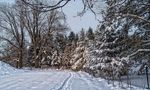 winterwanderung von fred 1199