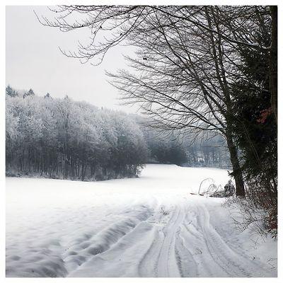 WinterWanderung rund um ...