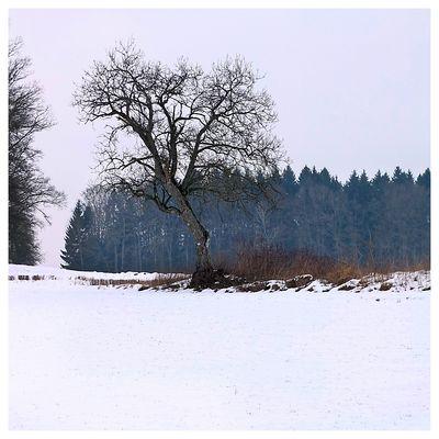 WinterWanderung rund um den ...