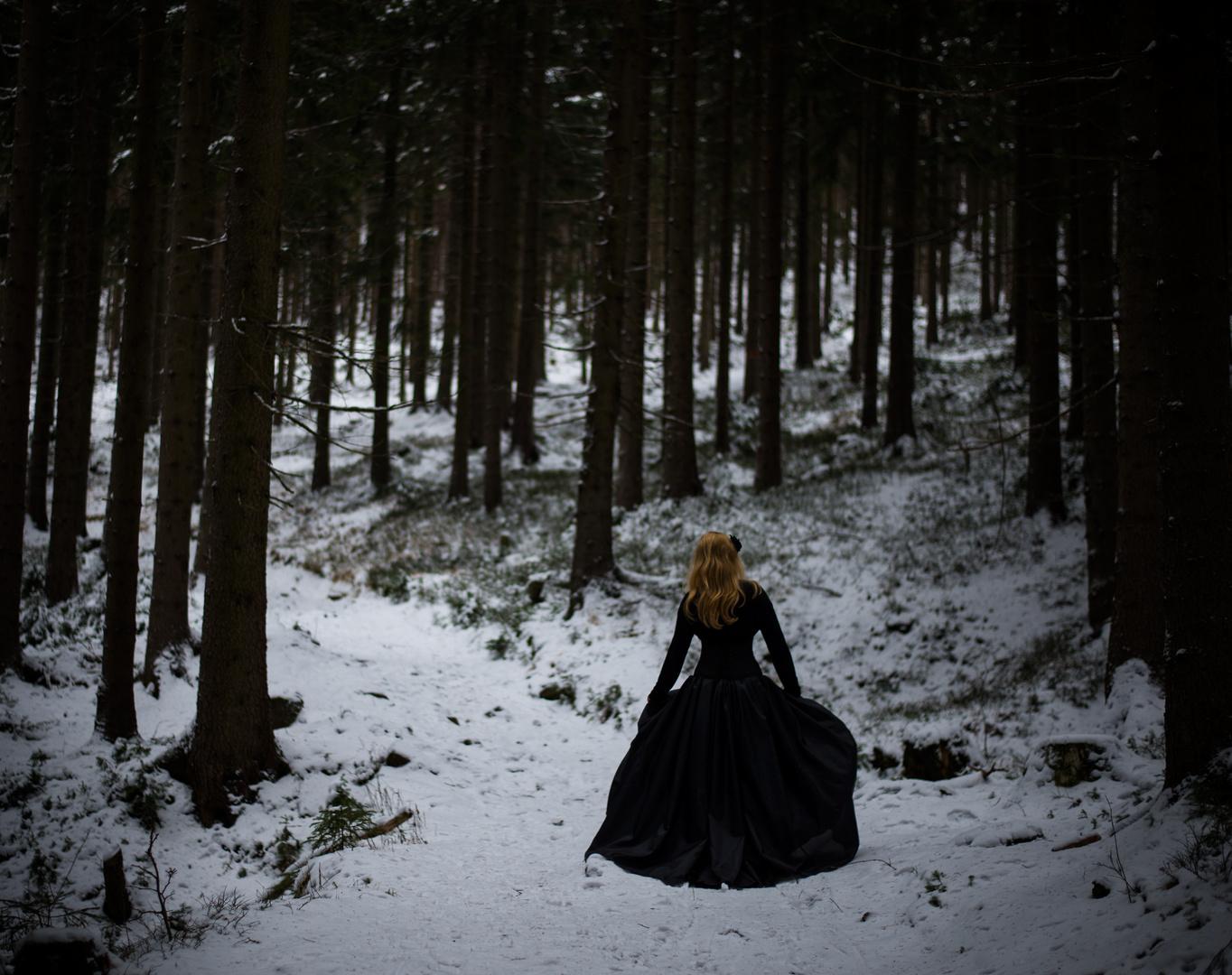 Winterwanderung5