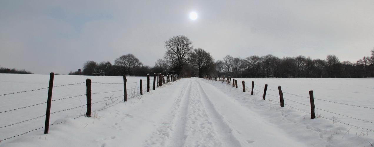 Winterweg 2