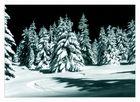 Winterweihnachtswald