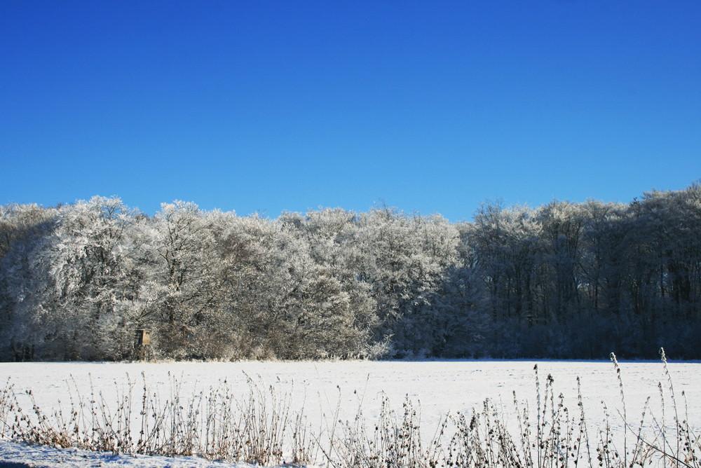 Winterweiß