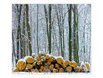 Winterweiß ohne Weißabgleich...