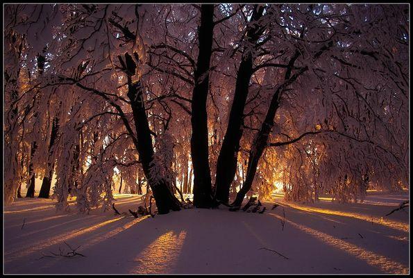 Winterwelt 2