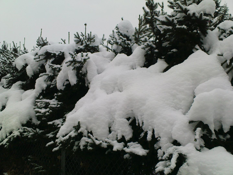 Winterwelt 2009