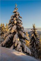 Winterwelt...