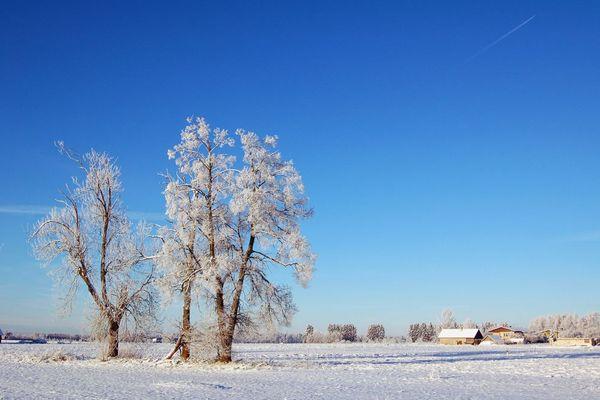Winterwelt in Estland