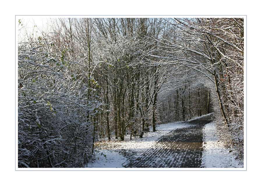 Winterwelten I