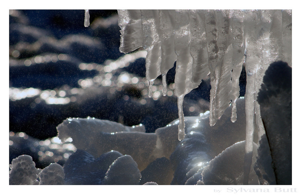- Winterwelten III -