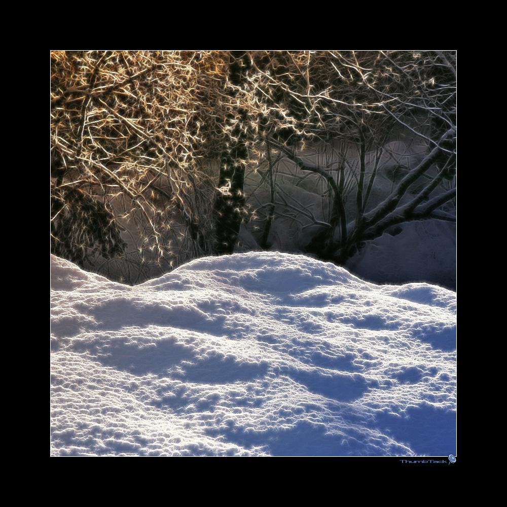 * winterwonderland *