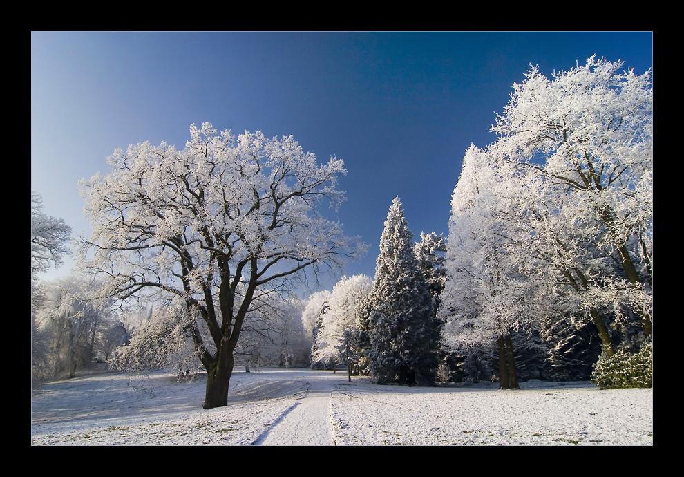 Winterwonderland an der Lesum #7