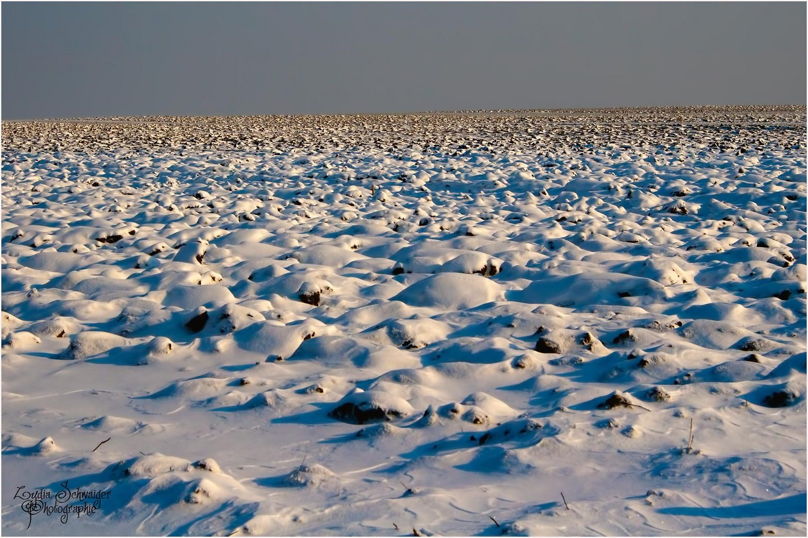 ...Winterwonderland.....