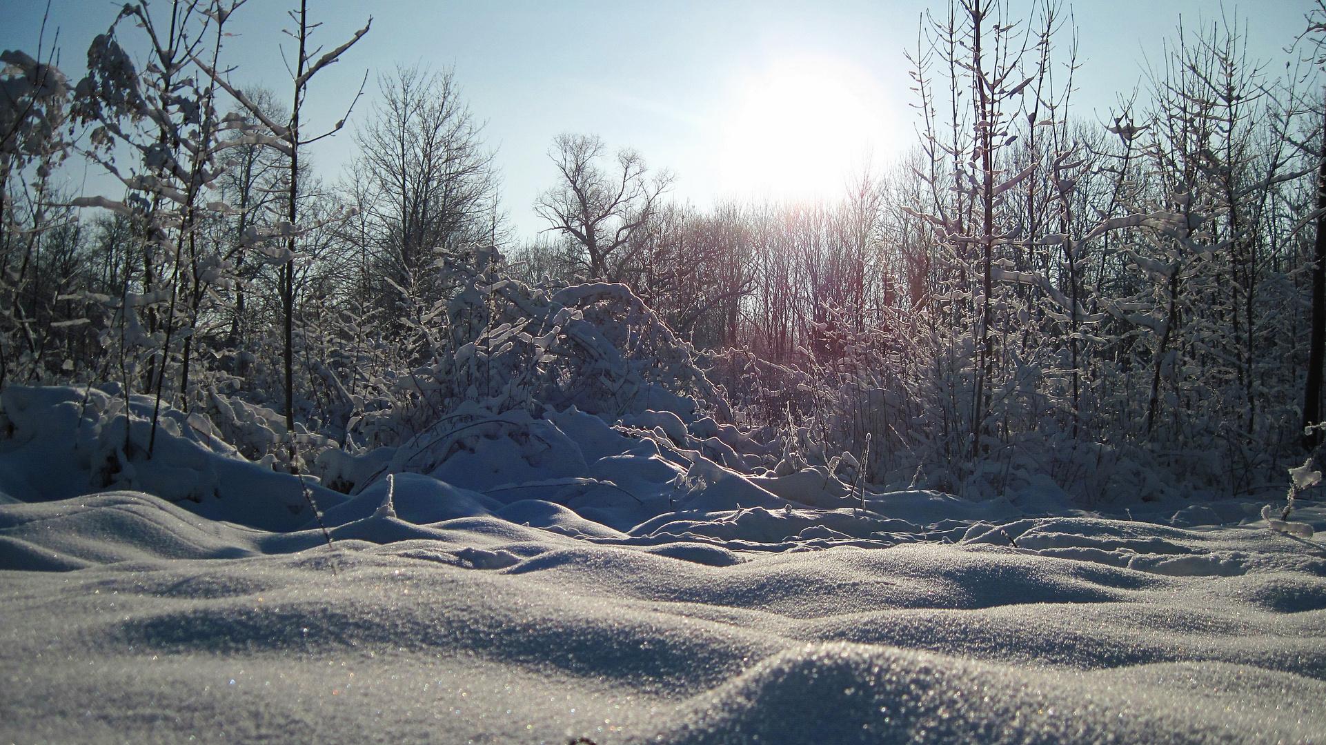 Winterwonderland Dezember 2010