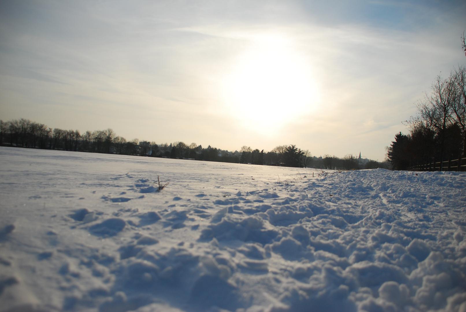 Winterwonderland in Venn