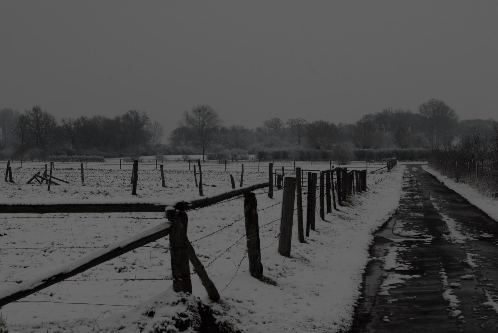 Winterwonderweg 2