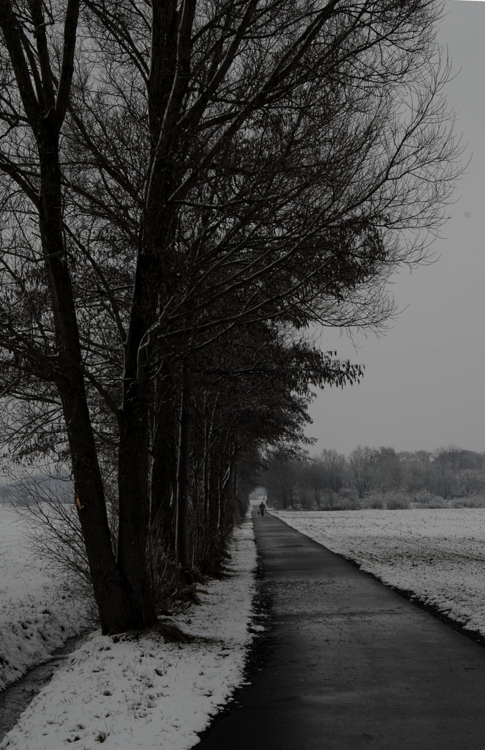 Winterwonderweg