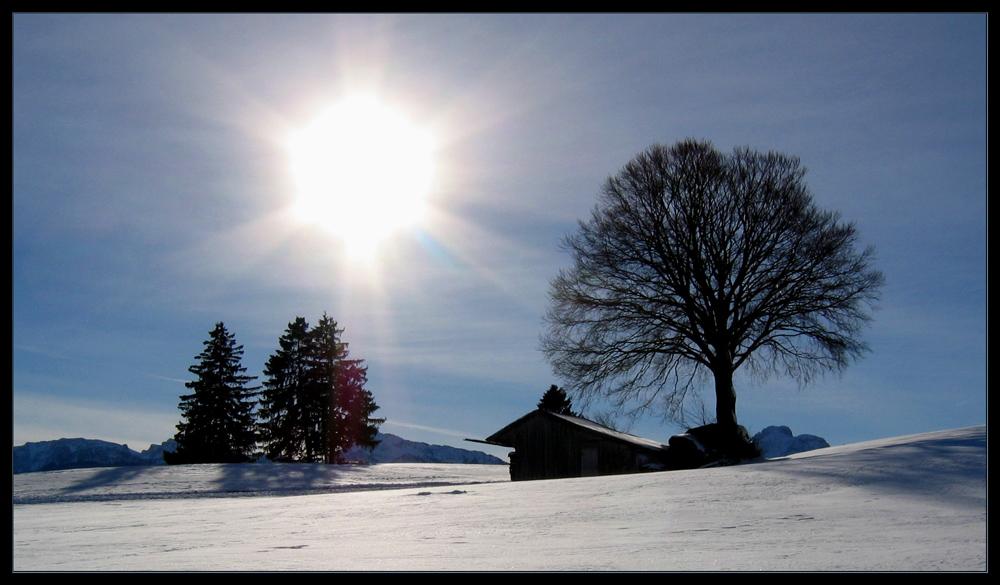 Winterwonne