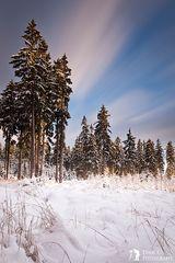 ***Winterwunderland***
