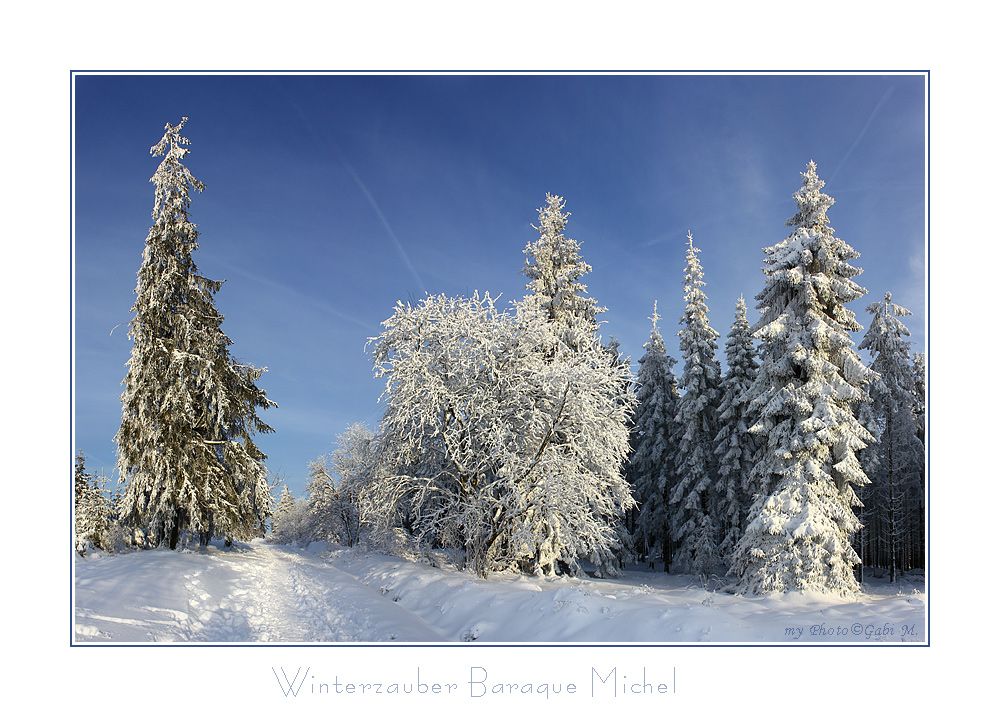 ~Winterzauber~